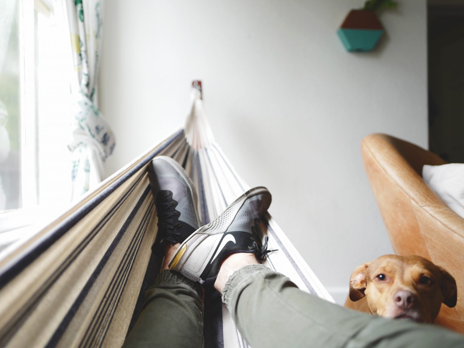 The Cancer Voice Asia   Share your lazy days now without feeling any guilt. The time you enjoy wasting, is time not wasted. Photo by Drew Coffman on Unsplash.