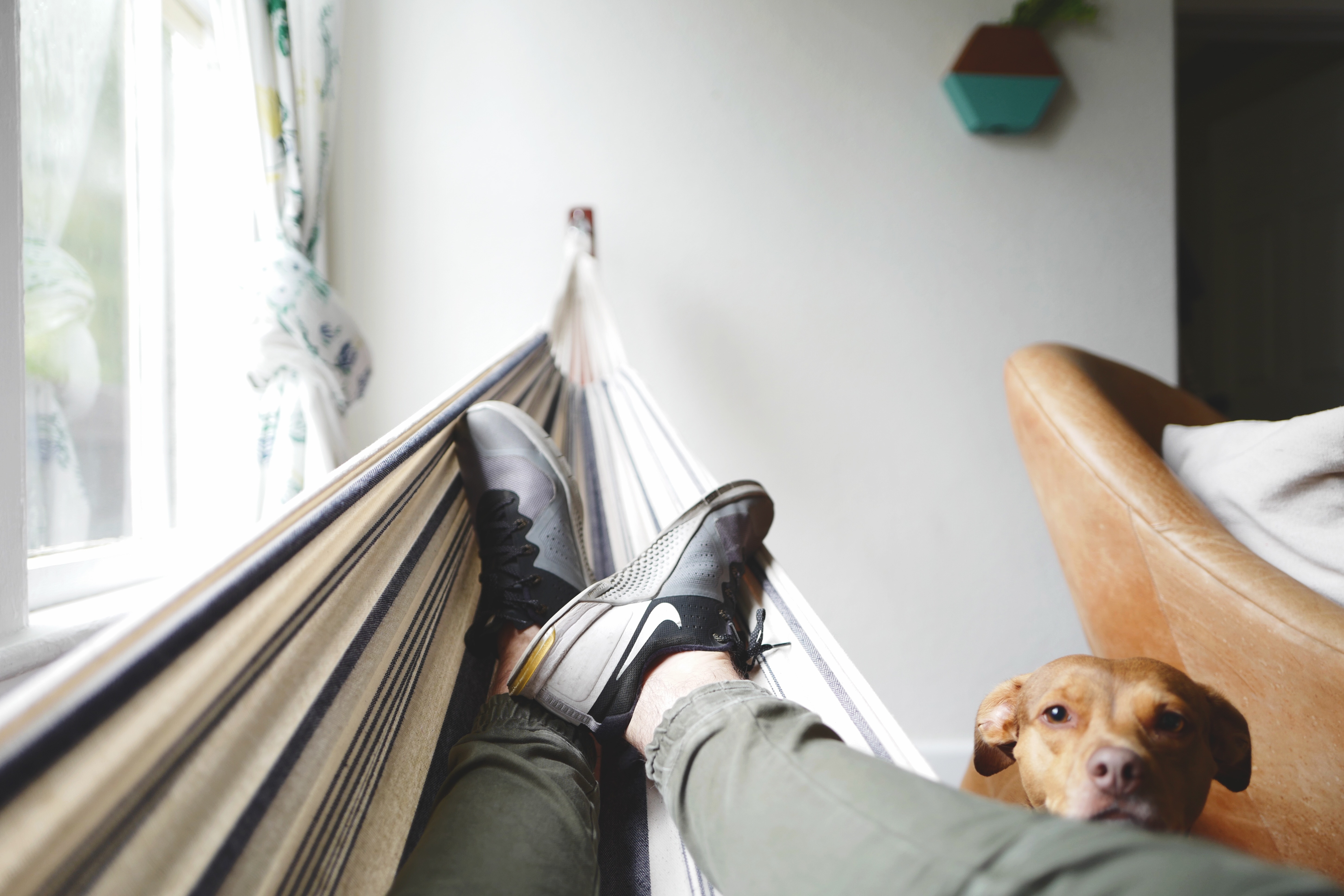 The Cancer Voice Asia | Share your lazy days now without feeling any guilt. The time you enjoy wasting, is time not wasted. Photo by Drew Coffman on Unsplash.