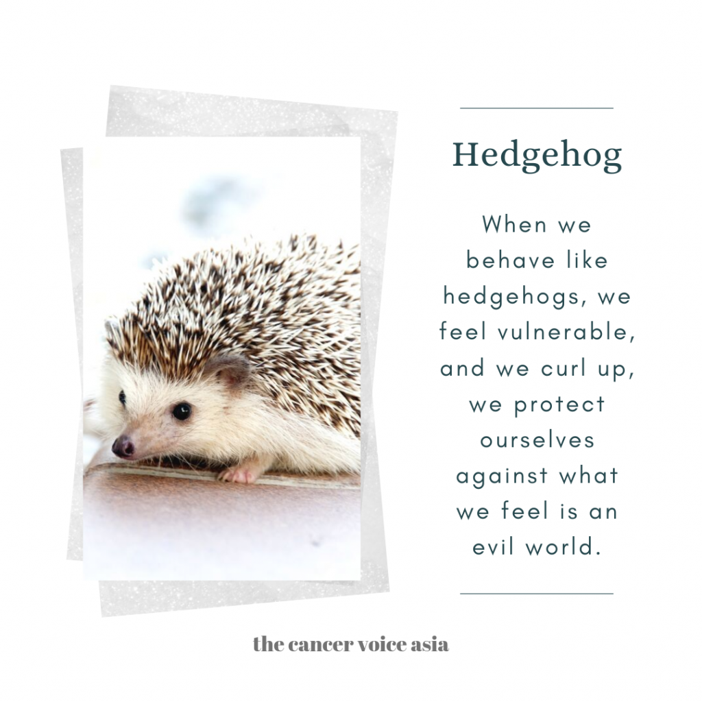"alt=""hedgehogs"""